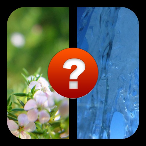 2 Pics 1 Word, What's the Word? A photo guessing game. Test your IQ with the ultimate picture puzzle quiz!