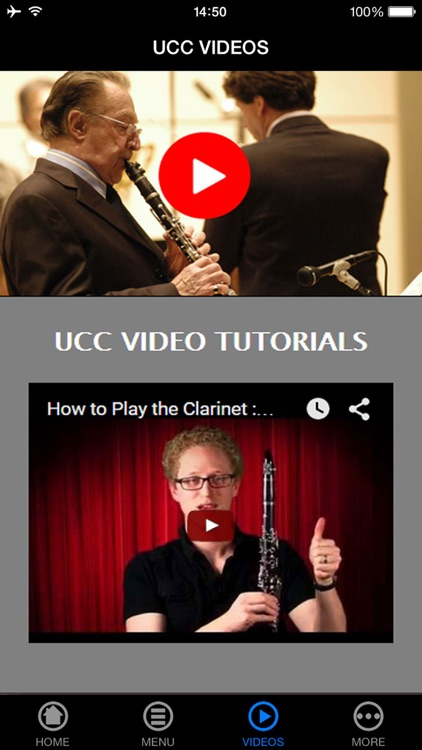 Play a Clarinet Made Easy For Beginners screenshot-3