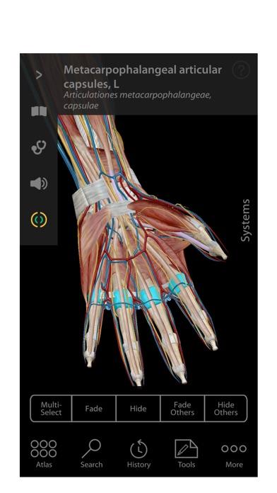 Screenshot for Human Anatomy Atlas – 3D Anatomical Model of the Human Body in Korea App Store
