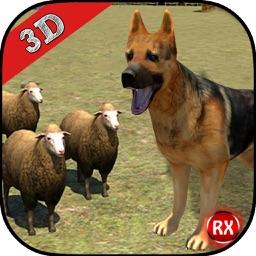 Farm Dog vs Stray Sheep
