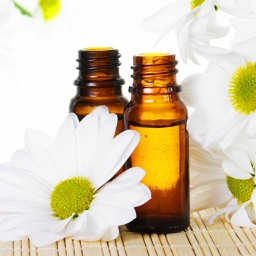 600 Essential Oil & Aromatherapy Recipes