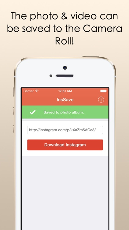 InsSave - Download & Save Photos & Videos From Instagram With Ease!