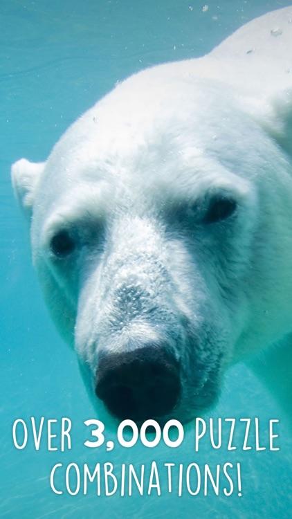 Jigsaw Wonder Polar Bears for Kids screenshot-0