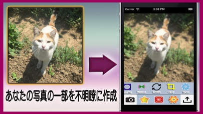 無料フォトグラム‐インスタグラムのために、美しいコラージュを作成する最強の写真編集機能紹介画像3
