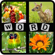 Activities of Kids Word Puzzles - Spell to learn Animals, Birds, Fruits, Flowers, Shapes, Vegetables for preschool...