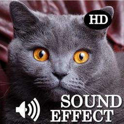 Animal Legend Sounds