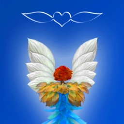 The Mystic Angels Empowerment Deck