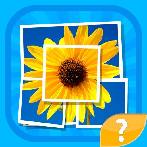 Мозаика - игра головоломка в угадай слова, попробуй понять картинки и угадать слово по их маленьким частям