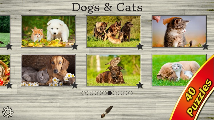 Cute Pets - Real Dogs and Cats Picture Puzzle Games for kids screenshot-4