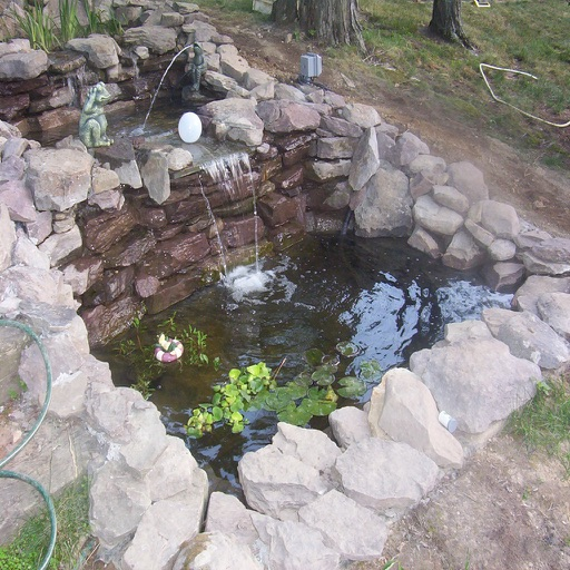 Build A Fish Pond By Peter Walsh