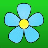 Codes for Spring Flower Hack