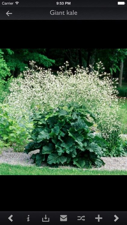 Plant Encyclopedia Pro