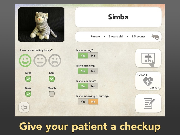 Dr. PetPlay - Pretend Play Veterinarian With Your Own Stuffed Toy Animals screenshot-0
