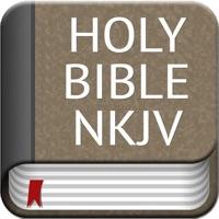 Codes for Holy Bible NKJV Offline Hack