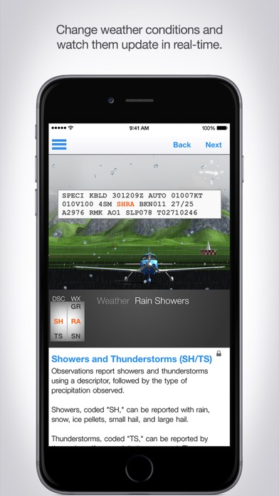 Aviation Weather Reports and Forecasts screenshot one