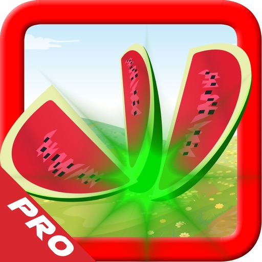 Fruit Splash Smasher PRO