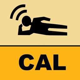 LeaningTraveler California