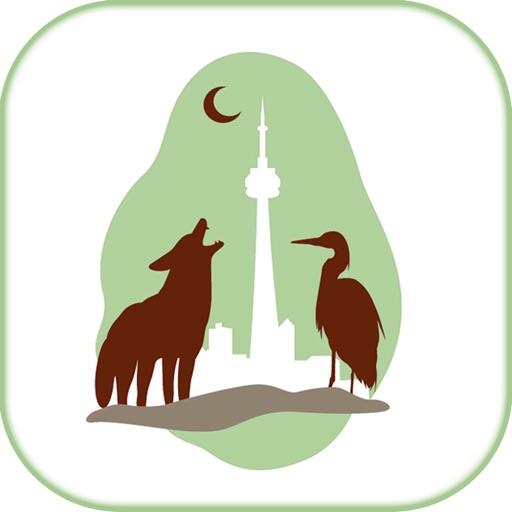 Wildlife Help - Toronto Wildlife Centre Rescue Injured, Sick & Orphaned Wild Animals