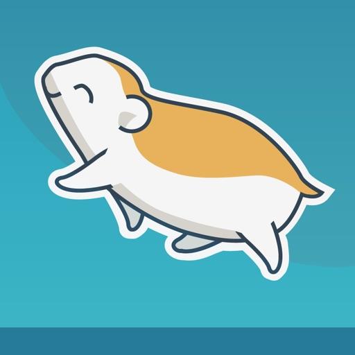 Roller Hamster