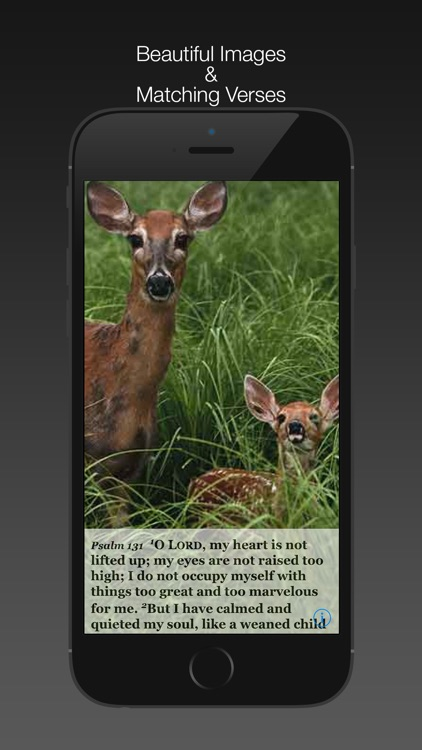 Psalm Daily Quotes ESV