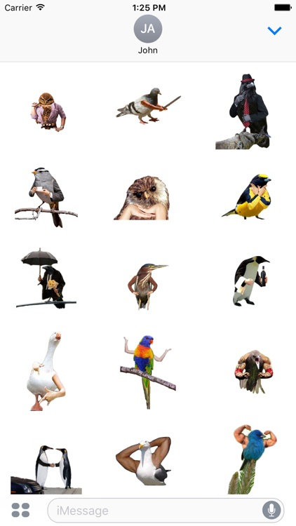 Birds with Arms Stickers