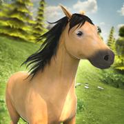 卡通 小马 的魔法 浪漫 动物 农场 世界