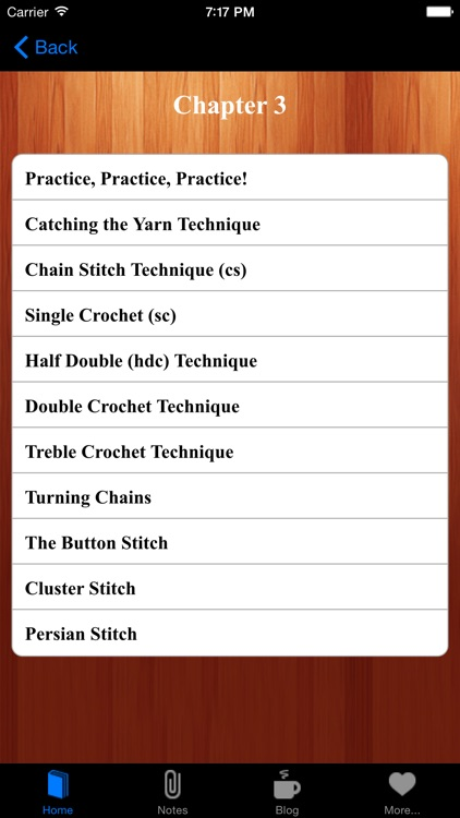 Crocheting For Fun & Profits Learn How to Crochet screenshot-4