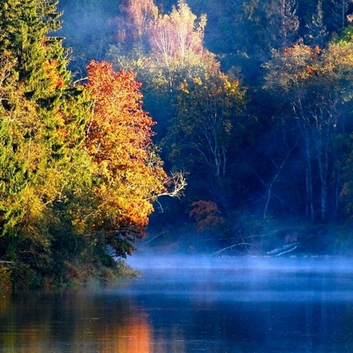Four Seasons Wallpapers HD: Quotes And Pictures By