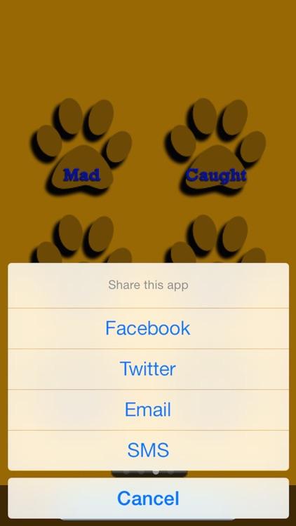 Kids Cat Jokes! screenshot-4