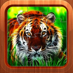 Tiger Panther Jigsaw Puzzles for Kids and Toddlers