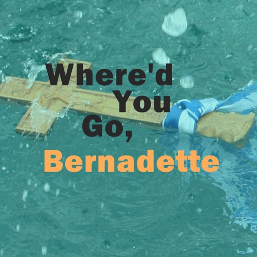 Quick Wisdom from Where did You Go, Bernadette