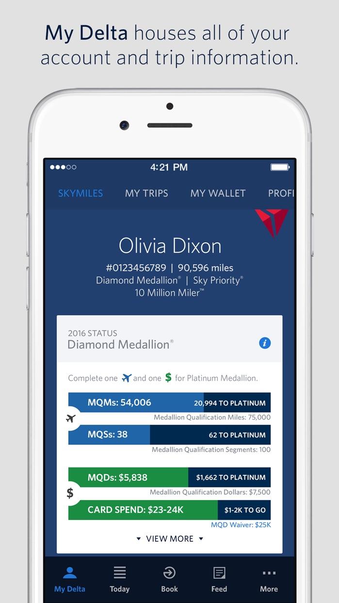 Fly Delta Screenshot