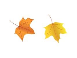 Leaf Sticker Pack!