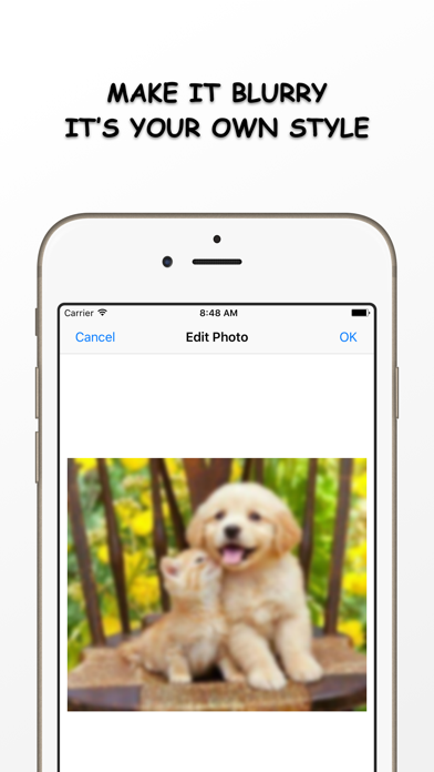 Photo Resizer - Resize and Filter your image Free screenshot three