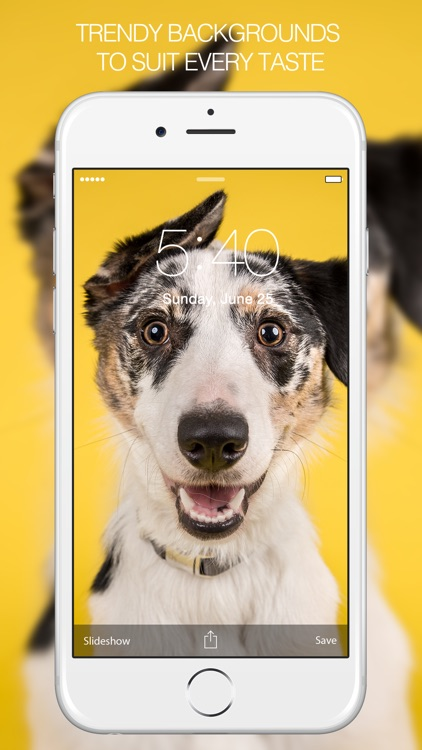 Pet Photography – Pet Pictures & Pet Backgrounds screenshot-3