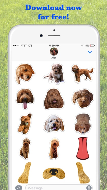 Louie - Dog Stickers for iMessage screenshot-0