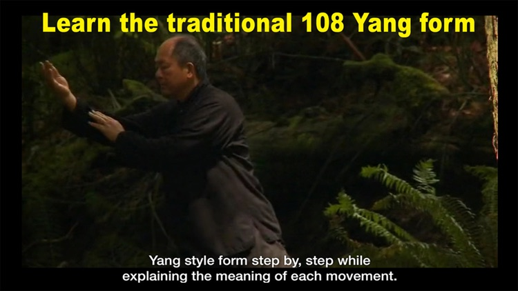 Yang Tai Chi for Beginners 1 screenshot-3