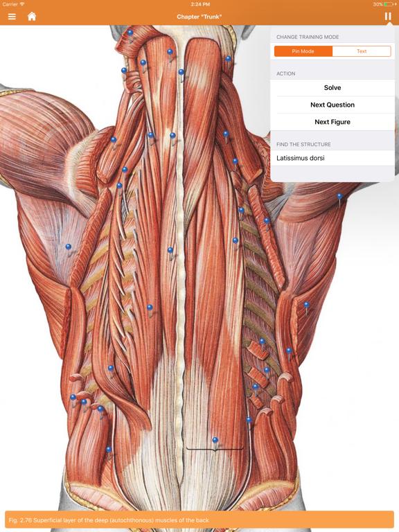 Sobotta Anatomy Atlas screenshot