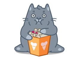 Cat Animation Sticker