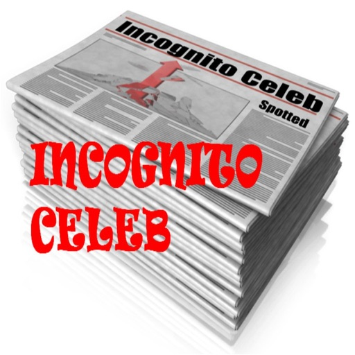Incognito Celeb