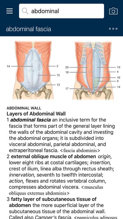 Dorland's/ Gray's Pocket Atlas of Anatomy