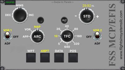 FSS MCP/EFIS screenshot three