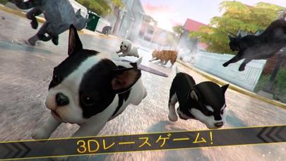 かわいい 犬 ねこ 大戦争 - シティ 子犬 白猫 ラッシュ紹介画像1