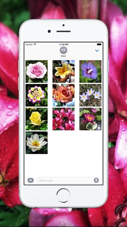 Flowers by Selim