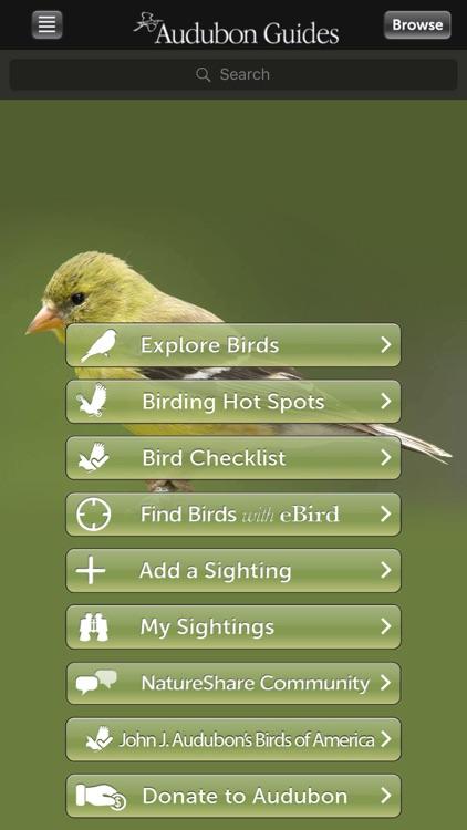 Audubon Birds of Central Park