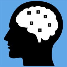 Activities of Go Memory - Test and Go Up Your Brain