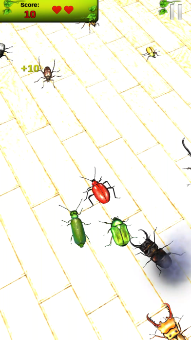 Real Bugs: Beetle Smasher 3D screenshot one