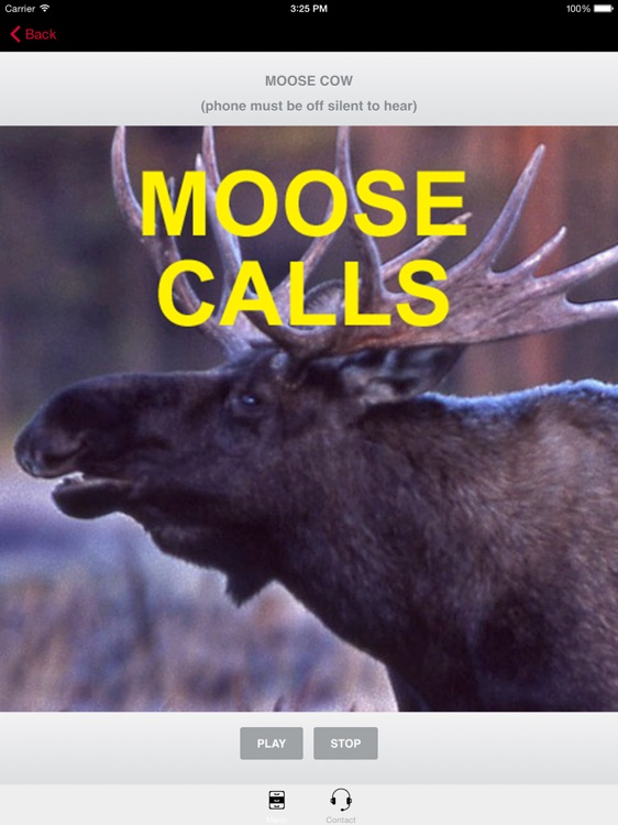 Moose Calls for Moose Hunting