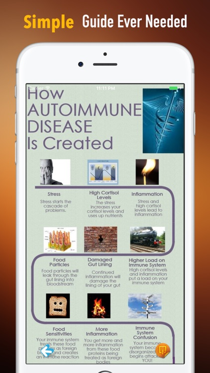 Autoimmune Disease 101| Guide and Top News