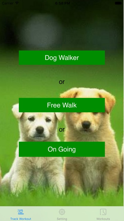 Dog Walker - Fitness Run